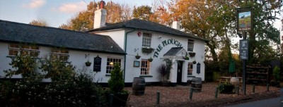 Plough Inn dog-friendly pub in the New Forest, Hampshire - Driving with Dogs