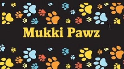 Mukki Pawz dog walking Stratford, Warwickshire - Driving with Dogs