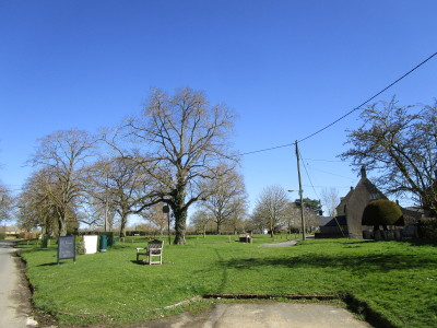 Evenlode Valley dog-friendly pub and dog walk, Oxfordshire - Driving with Dogs