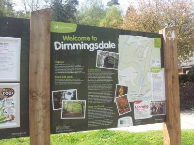 Dimmingsdale dog walks, Staffordshire - Driving with Dogs
