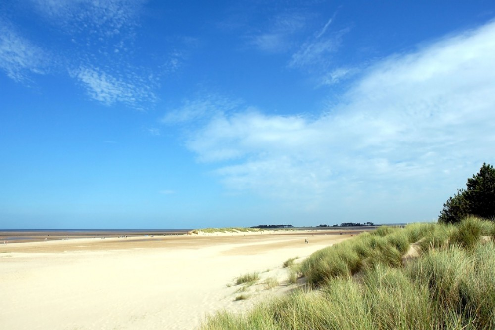 Wells next the Sea dog-friendly beach, Norfolk - Dog walks in Norfolk