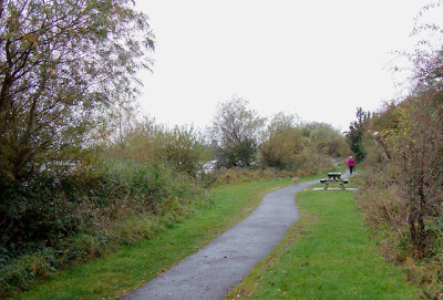 A38 dog-friendly pub and dog walk, Staffordshire - Driving with Dogs
