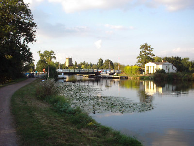 A38 canal towpath dog-walk, Gloucestershire - Driving with Dogs