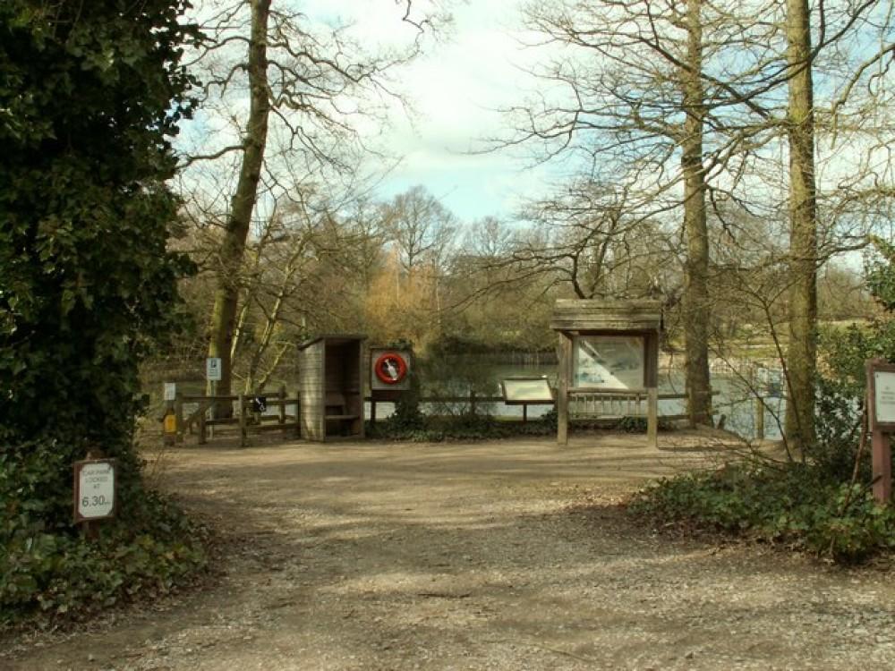 A12 Country Park dog walk near Danbury, Essex - Dog walks in Essex