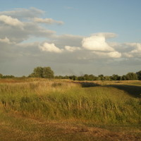 Fairlop Waters local dog walk, Greater London - Dog walks in Greater London