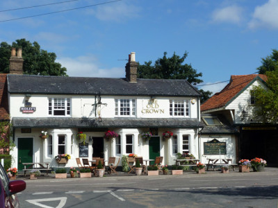 A12 country pub and dog walk, Essex - Driving with Dogs