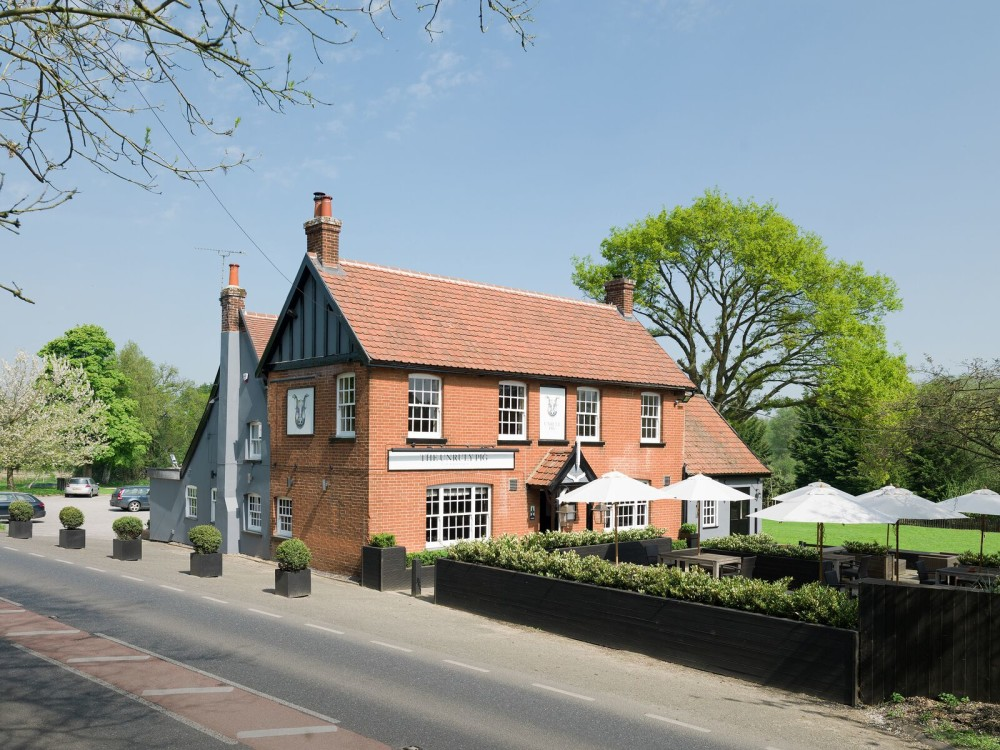 A12 doggiestop with forest walkies and great food, Suffolk - Dog walks in Suffolk