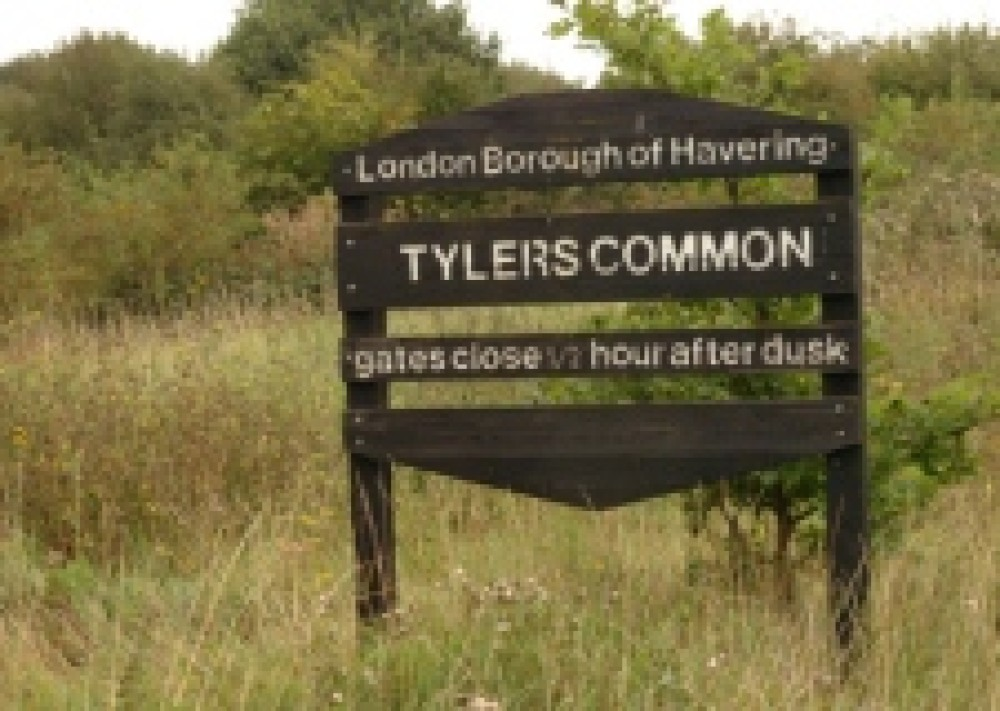 Tylers Common local dog walk, Greater London - Dog walks in Greater London