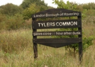 Tylers Common local dog walk, Greater London - Driving with Dogs