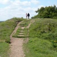 Nature reserve dog walk with historic defences near Felixstowe, Suffolk - Dog walks in Suffolk