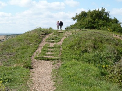 Nature reserve dog walk with historic defences near Felixstowe, Suffolk - Driving with Dogs