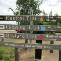Brixworth dog walks, Northamptonshire - Dog walks in Northamptonshire