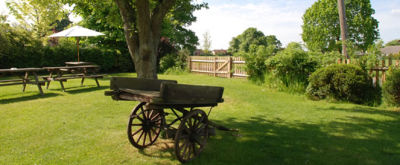 A131 Traditional dog-friendly village pub on the green, Essex - Driving with Dogs