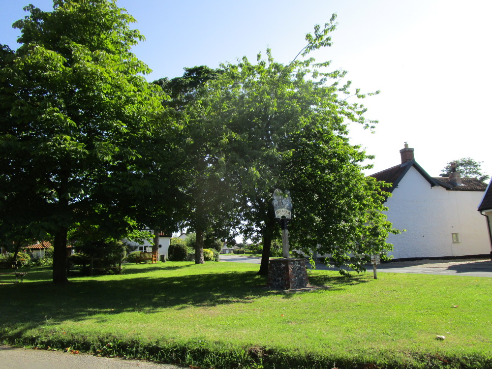 Great Hockham dog-friendly pub and dog walks, Norfolk - Dog walks in Norfolk
