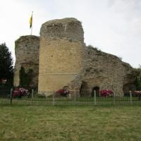 Bungay castle walk and dog-friendly pub, Suffolk - Dog walks in Suffolk
