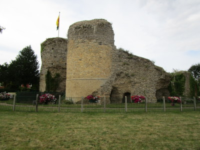 Bungay castle walk and dog-friendly pub, Suffolk - Driving with Dogs