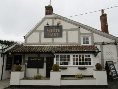 M5 Junction 21 dog-friendly pub and dog walk, Somerset - Driving with Dogs