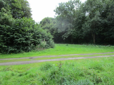 Riverside Park dog walk near Bewdley, Worcestershire - Driving with Dogs