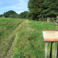 M5 Junction 4 Waseley Hills dog walks and cafe, Worcestershire