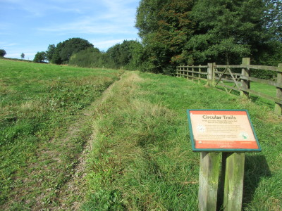 M5 Junction 4 Waseley Hills dog walks and cafe, Worcestershire - Driving with Dogs