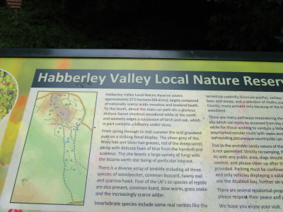 Habberley Valley dog walks, Worcestershire - Driving with Dogs