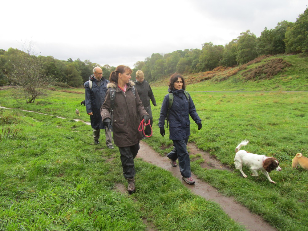Habberley Valley dog walks, Worcestershire - Dog walks in Worcestershire