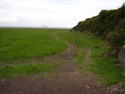 M5 Junction 21 Sand point dog-friendly beach near Weston, Somerset - Driving with Dogs
