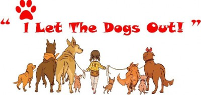 Dog walking & Day care services in Welwyn, Hertfordshire - Driving with Dogs