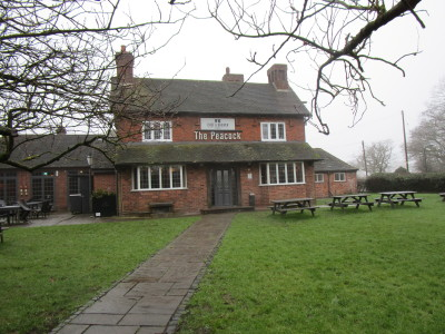 M42 Junction 2 dog-friendly pub and dog walk, Worcestershire - Driving with Dogs