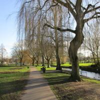Bromsgrove town local dog walk, Worcestershire - Dog walks in Worcestershire