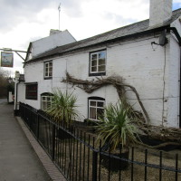 A451 dog-friendly pub and walk, Worcestershire - Dog walks in Worcestershire