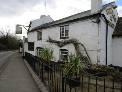 A451 dog-friendly pub and walk, Worcestershire - Driving with Dogs