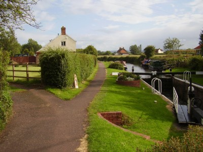 M5 Junction 24 dog walk and tea-rooms, Somerset - Driving with Dogs