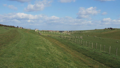 A27 dog walk on the roof of the South Downs, East Sussex - Driving with Dogs
