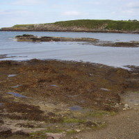 Cemaes dog-friendly beach, Anglesey, Wales - Dog walks in Wales