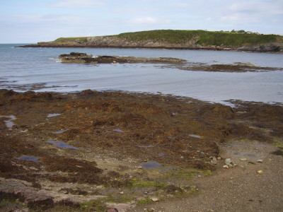 Cemaes dog-friendly beach, Anglesey, Wales - Driving with Dogs
