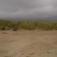 Dog-friendly beach near Porthmadog, Wales - Dog walks in Wales