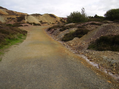 Dog walk near Amlwch, Anglesey, Wales - Driving with Dogs