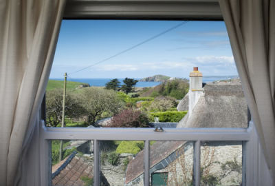 A379 dog-friendly pub and dog walk by the seaside, Devon - Driving with Dogs