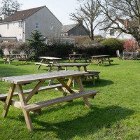 A37 dog-friendly inn near Yeovil, Dorset - dog-friendly-beergarden.jpg