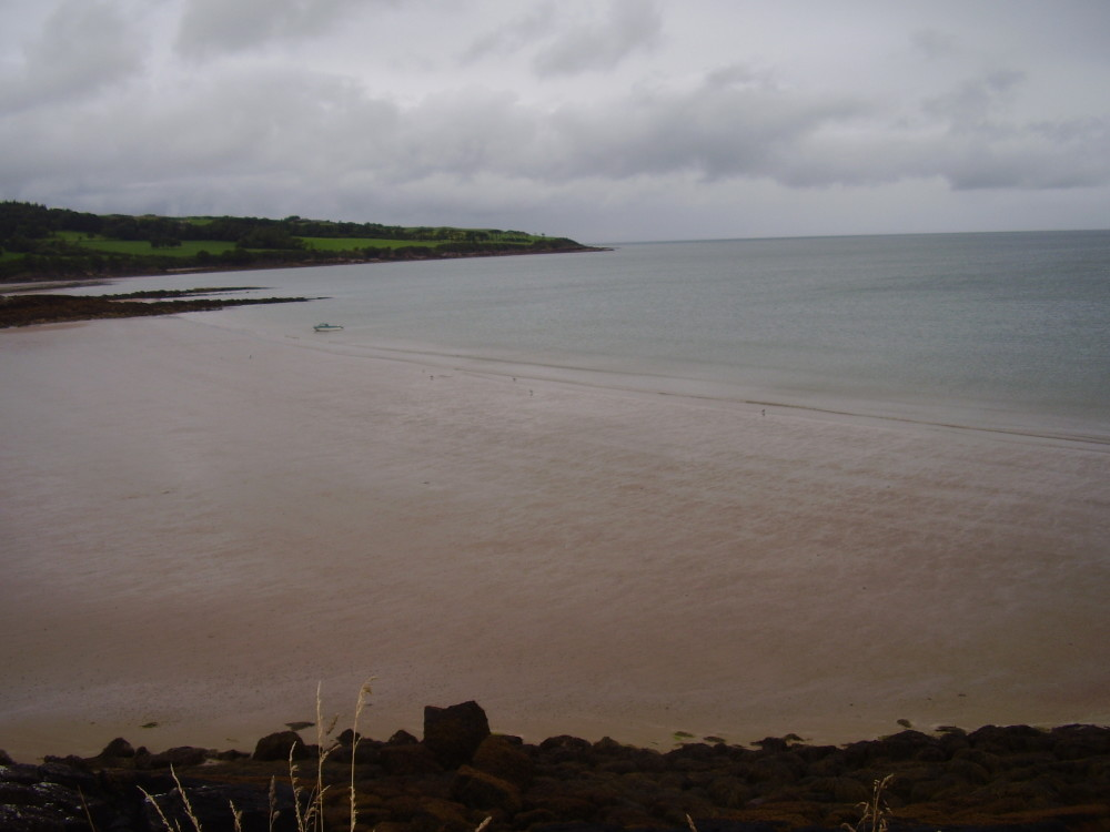 A55 Dulas dog-friendly beach, Anglesey, Wales - Dog walks in Wales