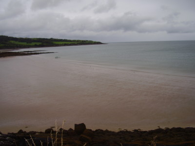 A55 Dulas dog-friendly beach, Anglesey, Wales - Driving with Dogs