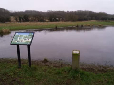 Thurcaston dog walks, Leicestershire - Driving with Dogs