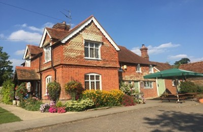 A29 Low Weald walks and dog-friendly pub, West Sussex - Driving with Dogs