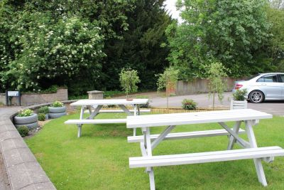 Dog-friendly pub and a walk in the steps of thirsty Romans, Cambridgeshire - Driving with Dogs