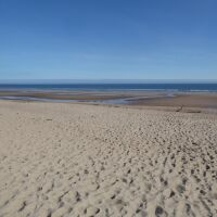 Historic dog-friendly village with pubs, walks, hotels and a massive dog-friendly beach, Northumberland - Dog walks in Northumberland