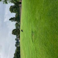 North Inch park and garden, Scotland - 78A57CA7-8CA7-412F-A5E3-3A0FE3660AB6.jpeg