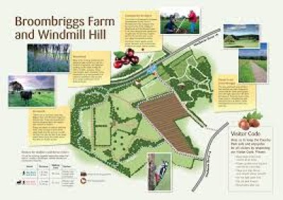 Broombriggs Farm and Windmill Hill dog walks near Woodhouse Eaves, Leicestershire - Driving with Dogs