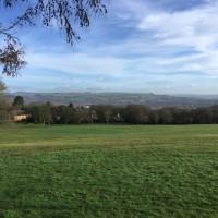 Morriston dog walk, Wales - E55F088D-1333-4182-ADB9-AD18311E4345.jpeg