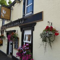 Dog-friendly pub and walk near the M6 Jct 42, Cumbria - Cumbria dog-friendly pubs and dog walks.jpg